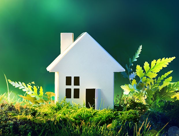 eco home, eco-friendly homes, saving earth, green initiatives, reuse, recycle, reduce