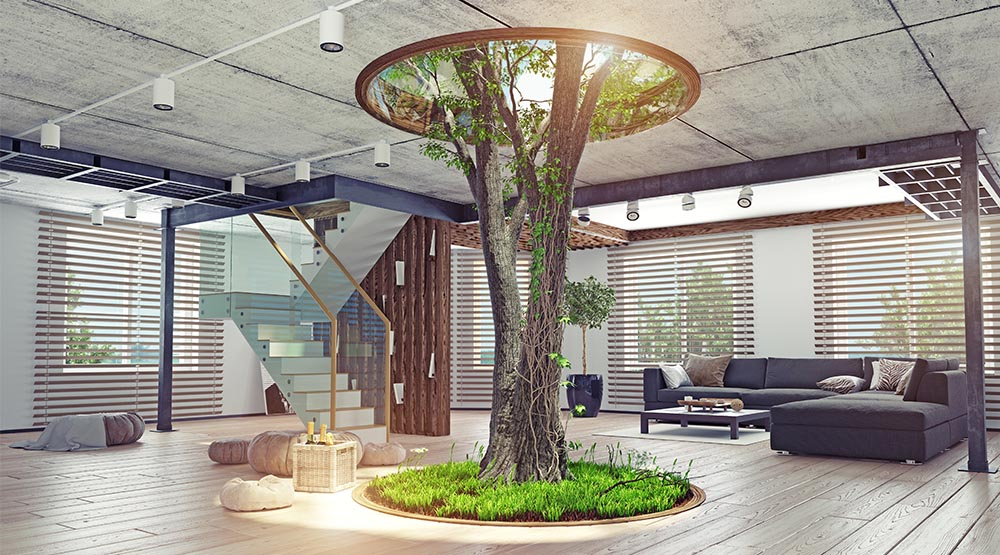 biophilic home, plants in home