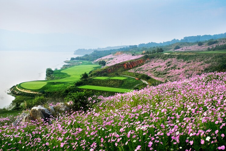 Spring city golf course, china, yunnan, forest, sea view
